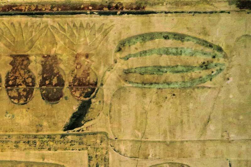 埃及壁畫上的西瓜