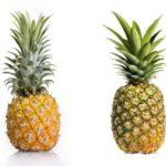 菠蘿和鳳梨原來不一樣?!